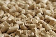 Продам древесный наполнитель (экологически чистый продукт).
