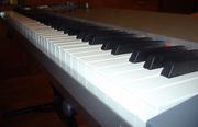 Продам ПОЛНОВЗВЕШЕННУЮ (РОЯЛЬНУЮ)  миди-клавиатуру СМЕ 88 клавиш.