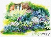 Ландшафтный дизайн участка: консультация бесплатно