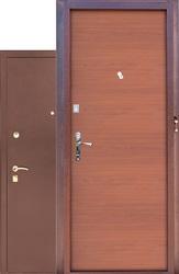 Двери входные Зевс
